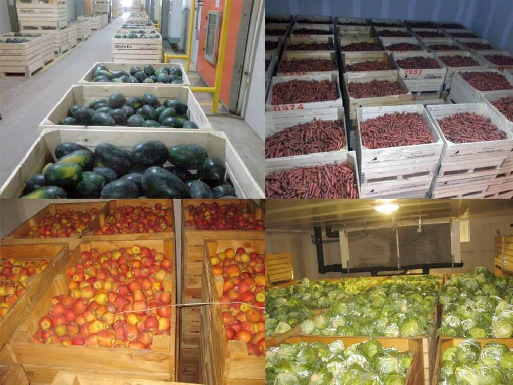 Fruits and Vegetables storage in Cold Storage
