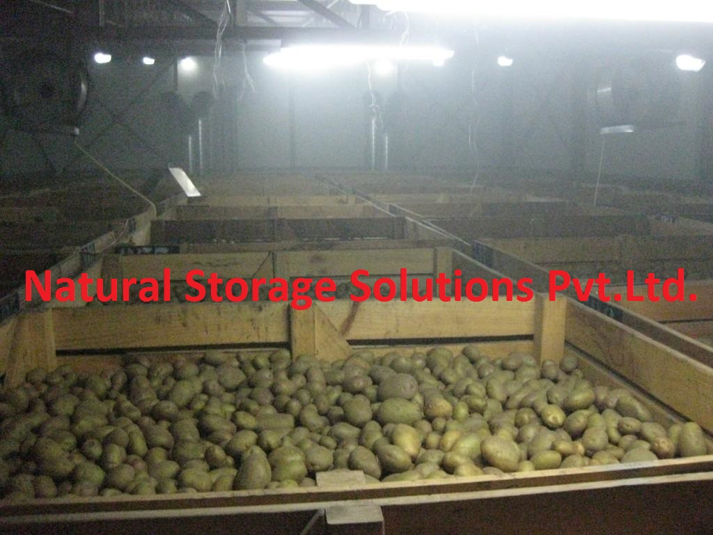 Potato Cold Storage in india